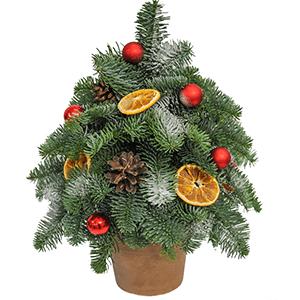Букет на Новый Год - Новогодняя елочка