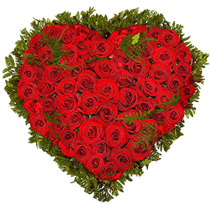 Цветы на 14 февраля - С 14 февраля!