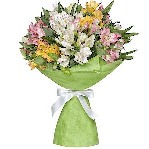 Цветы самара недорого