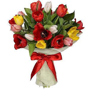 Тюльпаны (21 шт.)